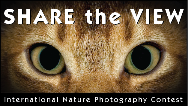 Share the View - International Nature Photo Contest