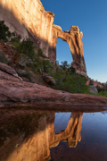 Angel Arch Reflection - Canyonlands National Park, Utah